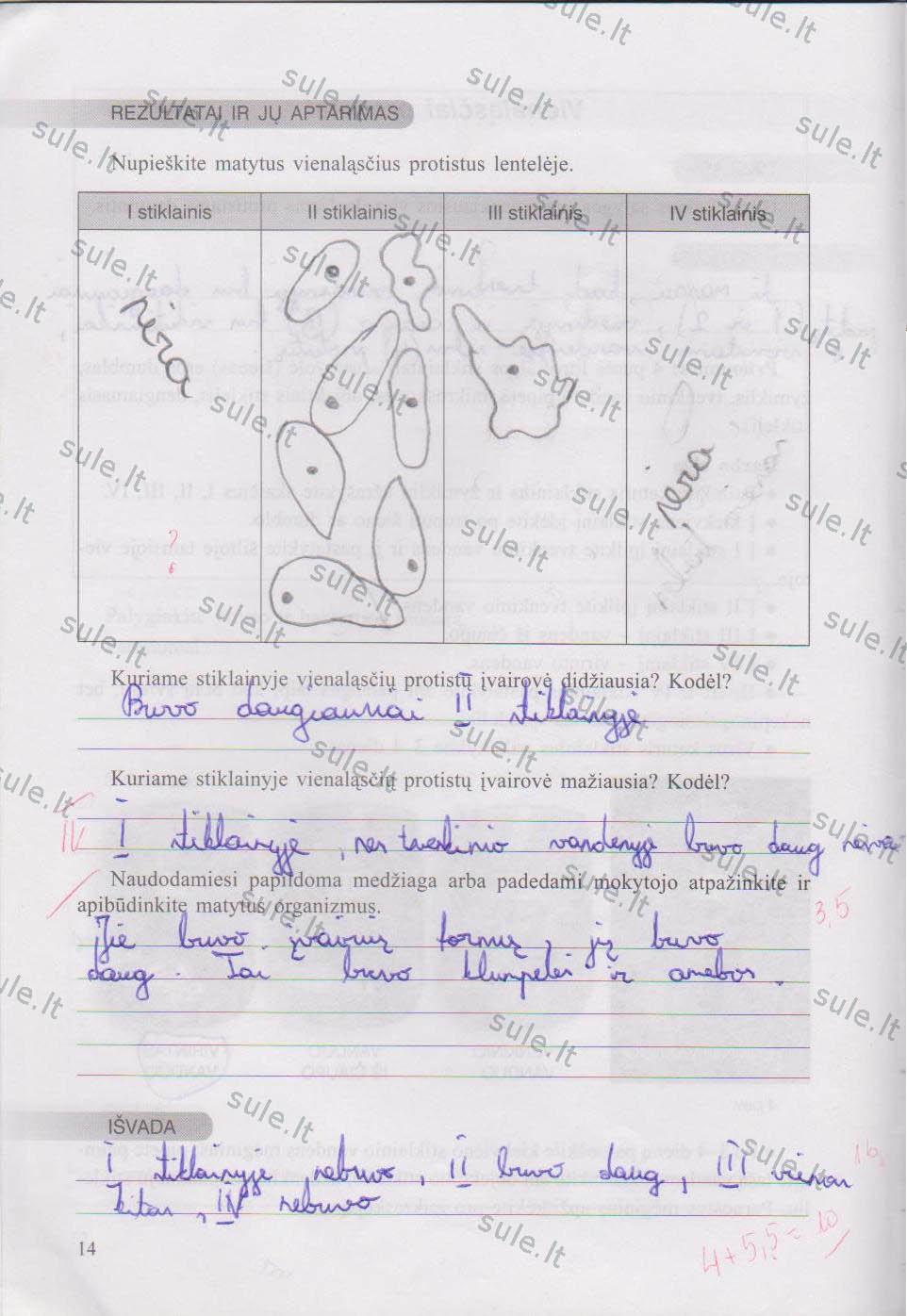 7 klasė - Biologijos praktikos darbai