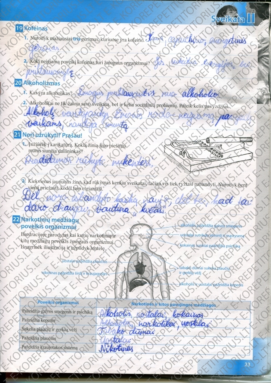 Biologija, Bios pratybos