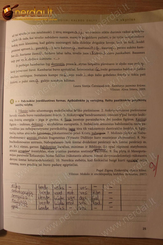 Lietuviu kalba, ŠOK