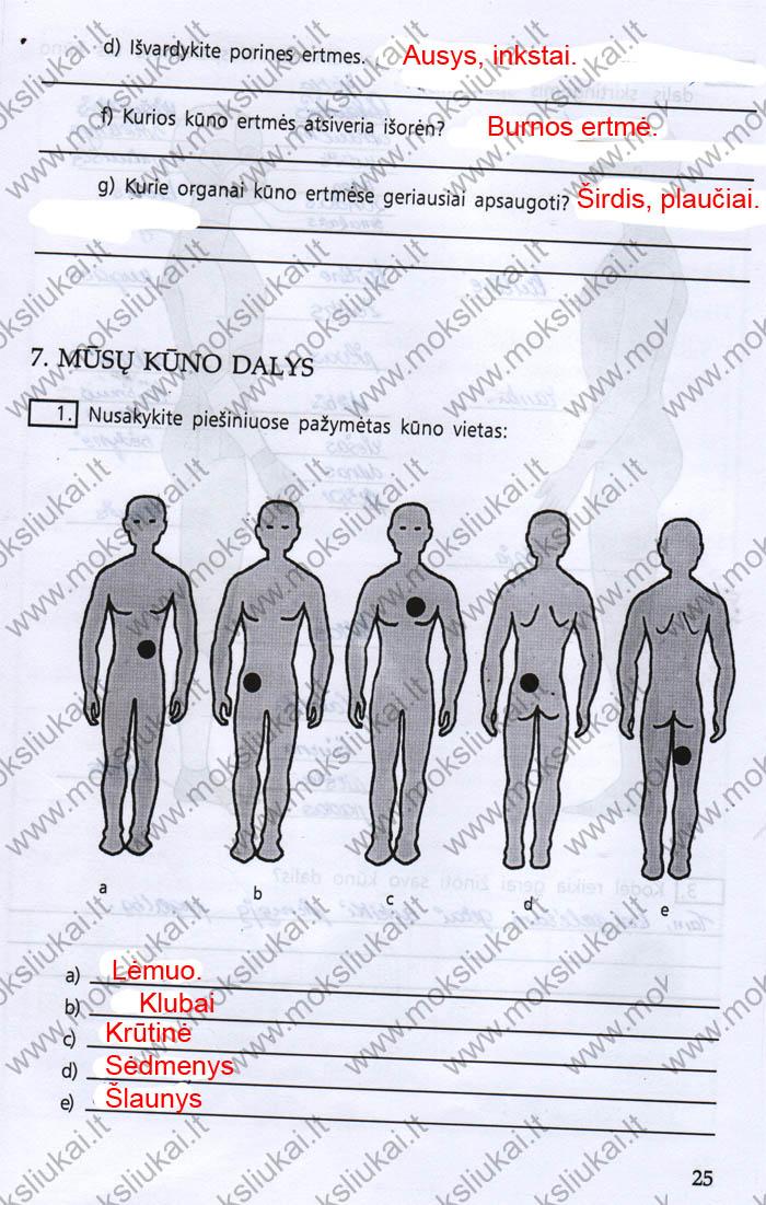 9 klasė, Žmogaus biologija ir sveikata
