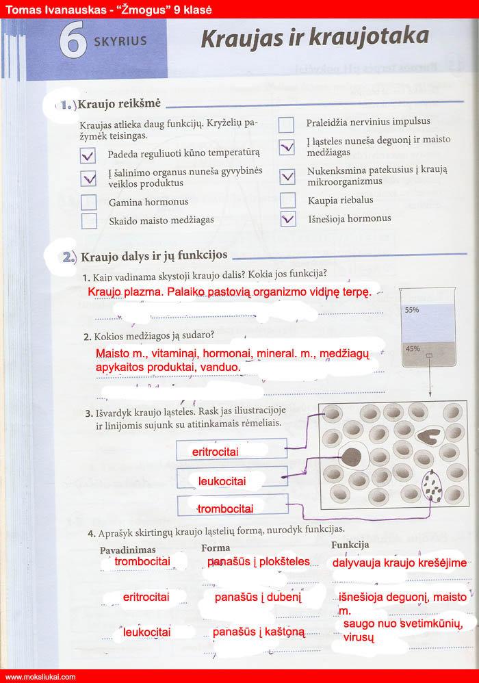 9 klasė, Biologija, Žmogus