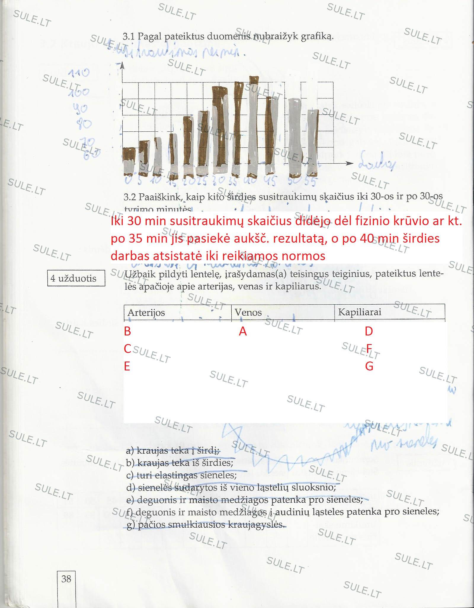 Peržiūrėti puslapį 30