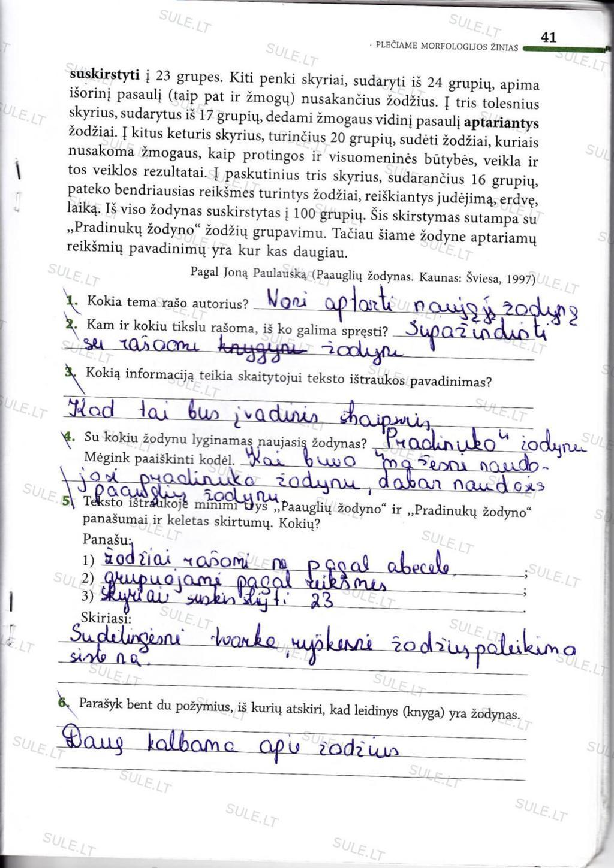 Peržiūrėti puslapį 33