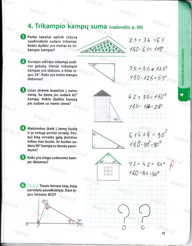Peržiūrėti puslapį 41