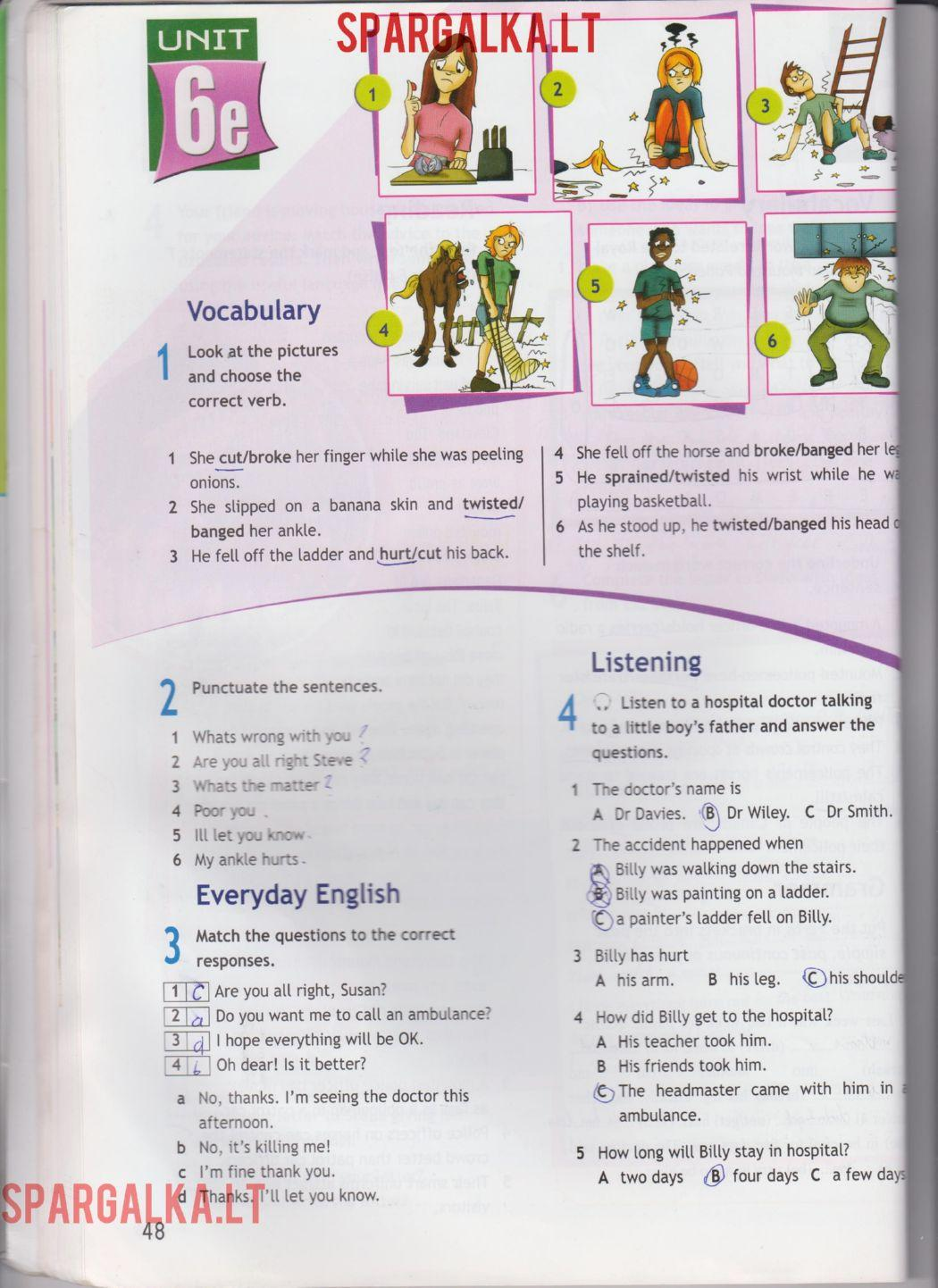 Access 3 Workbook
