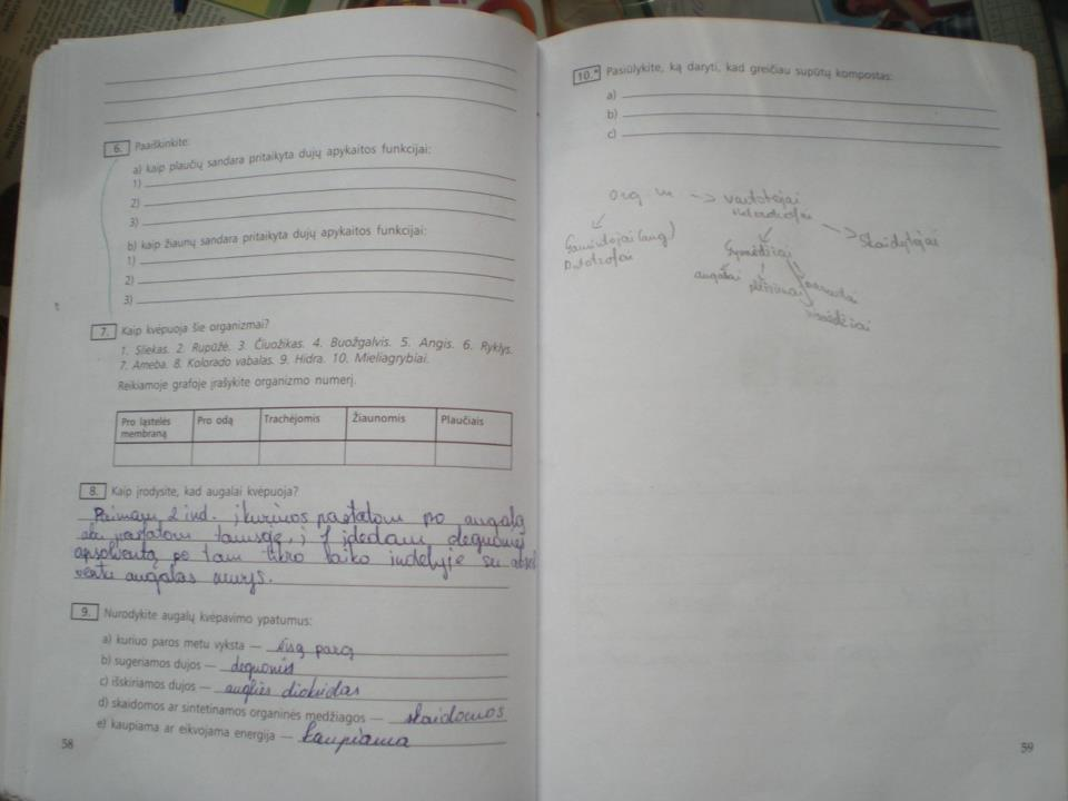 Biologijos pratybos 10 klasei