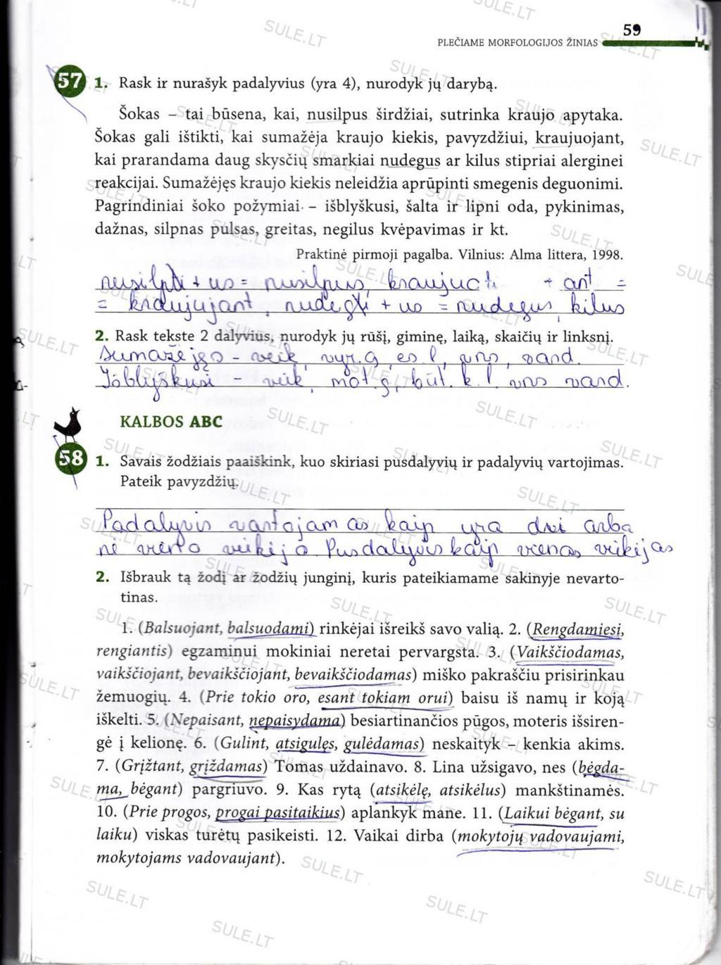 Peržiūrėti puslapį 48