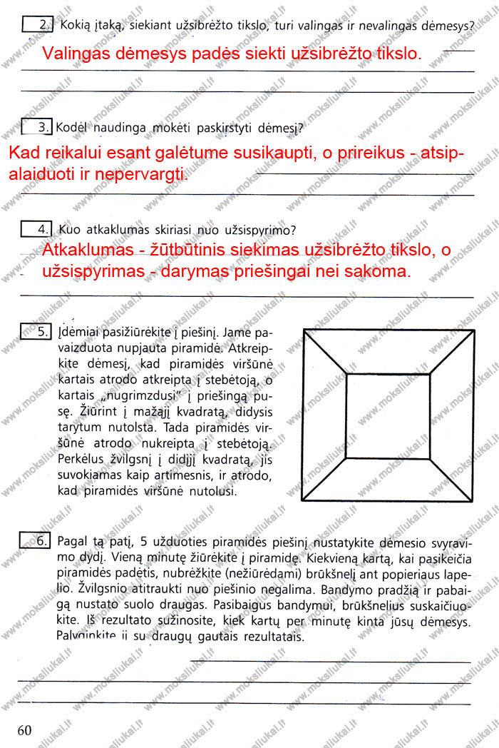 Peržiūrėti puslapį 52