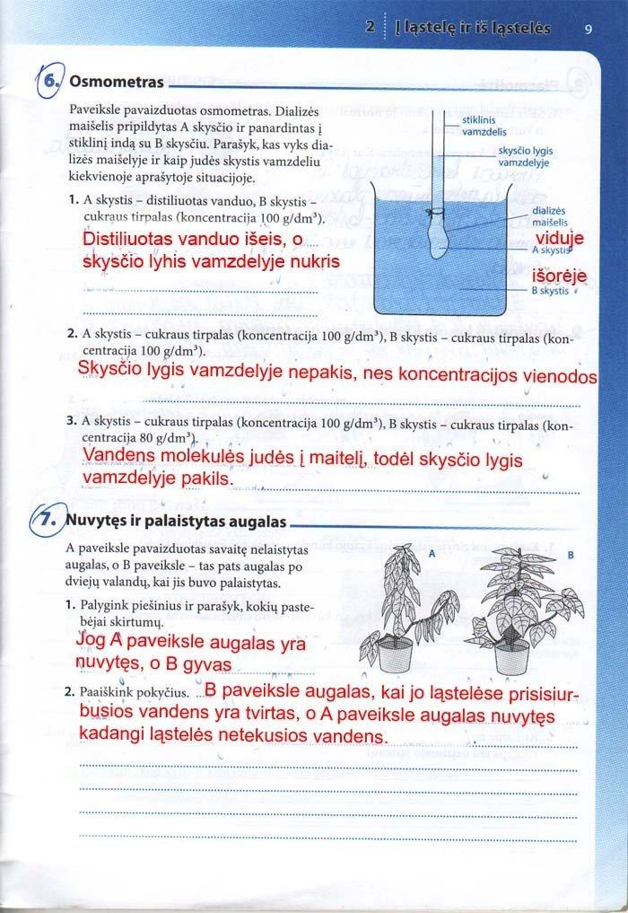 9 klasė, Biologija tau
